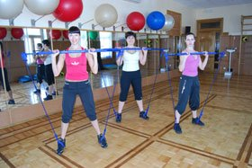 fit_gymstick0